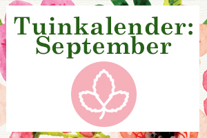Tuin tips september