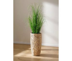 Badkamer plant