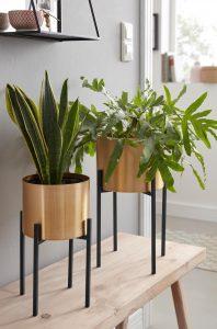 Planten voor slaapkamer industrieel