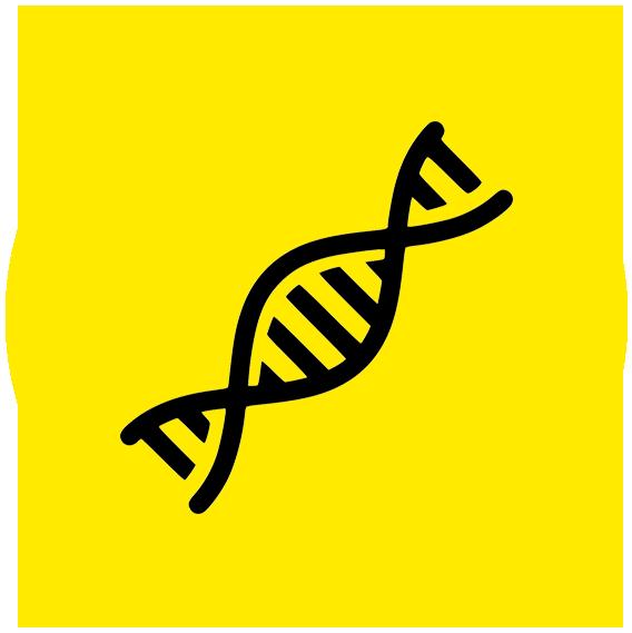 icoon DNA geel