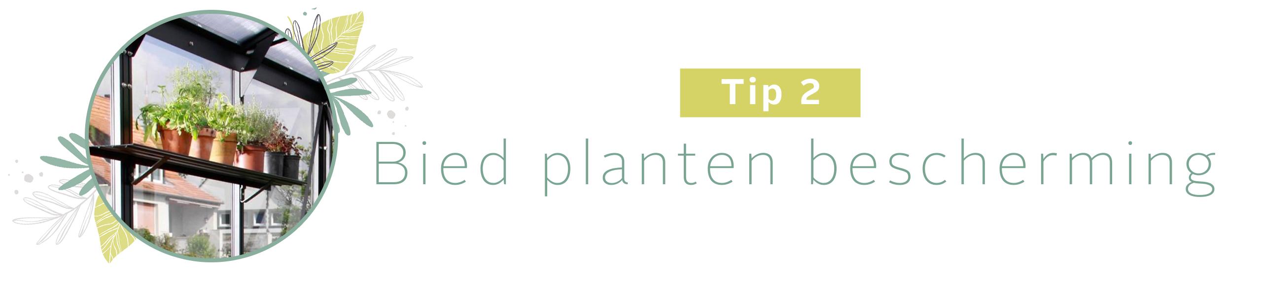 Tip 2: Bied planten bescherming