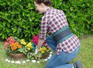 De beste tips voor een onderhoudsarme tuin