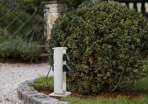Onderhoudsarme tuin planten