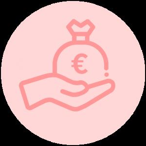Icon budget