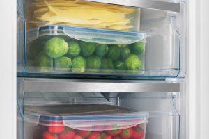 Voedsel bewaardozen in de vriezer